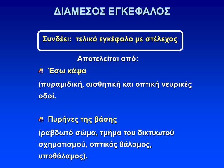 ΔΙΑΜΕΣΟΣ ΕΓΚΕΦΑΛΟΣ