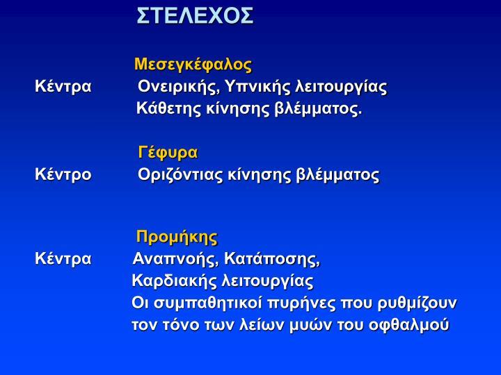 ΣΤΕΛΕΧΟΣ