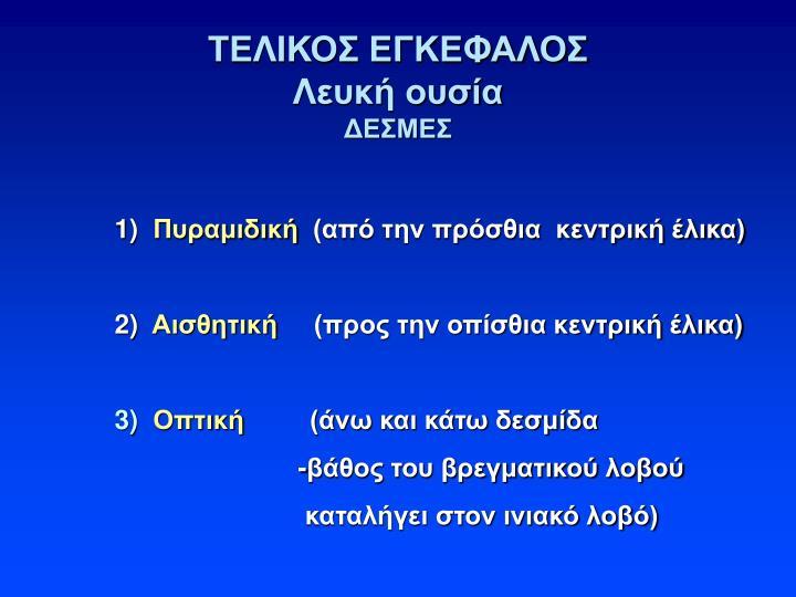 ΤΕΛΙΚΟΣ ΕΓΚΕΦΑΛΟΣ