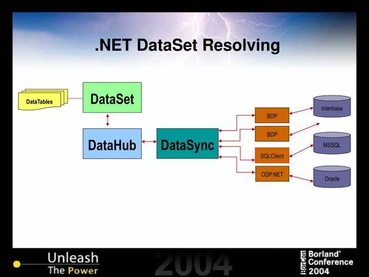.NET DataSet Resolving
