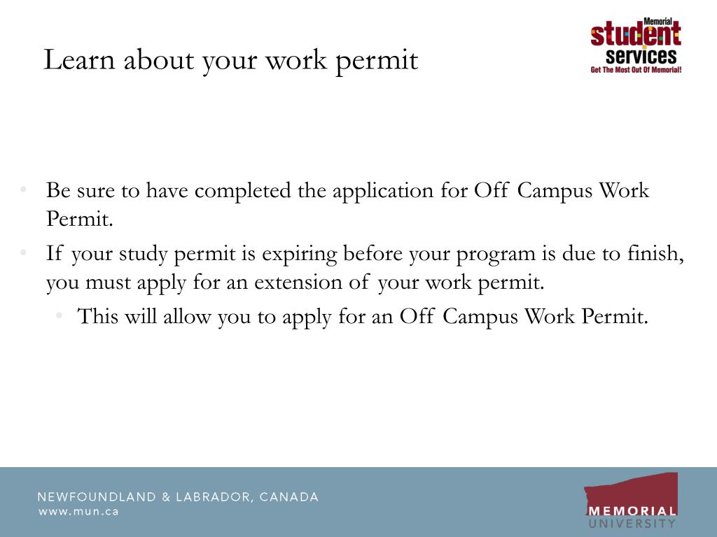 Learn about your work permit
