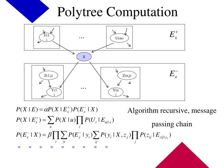 Polytree Computation