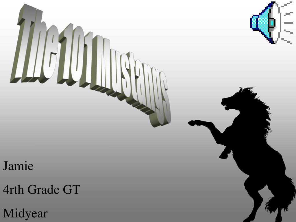 The 101 Mustangs