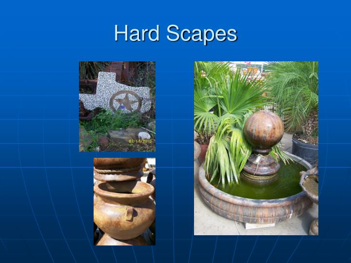 Hard Scapes