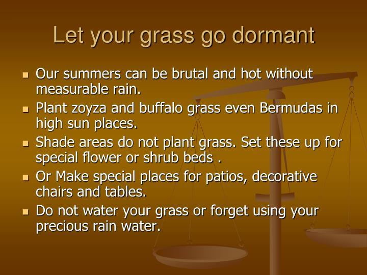Let your grass go dormant