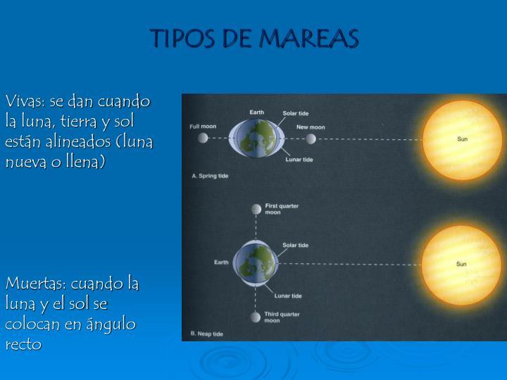 TIPOS DE MAREAS