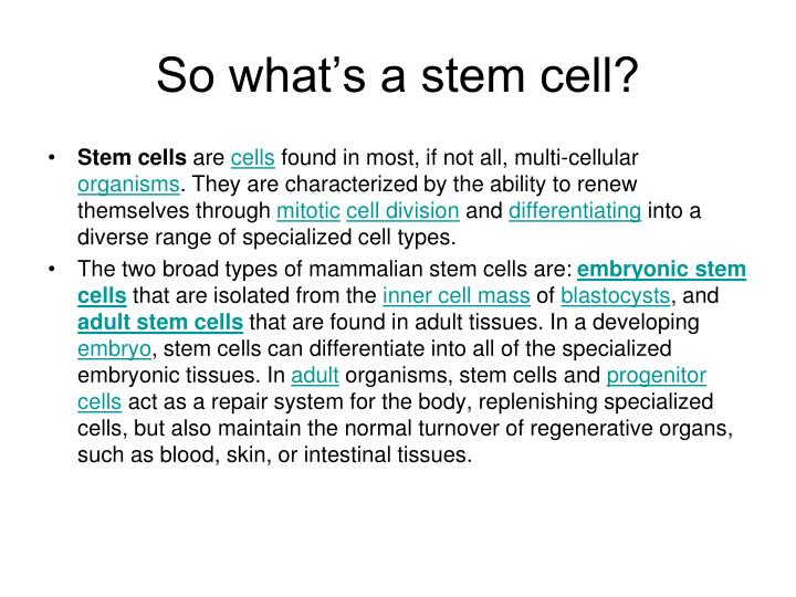 So what's a stem cell?