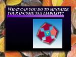 w hat can you do to minimize your income tax liability