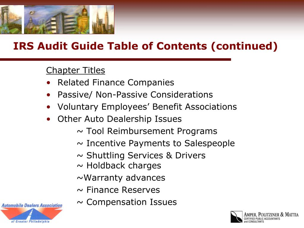 IRS Audit Guide Table of Contents (continued)
