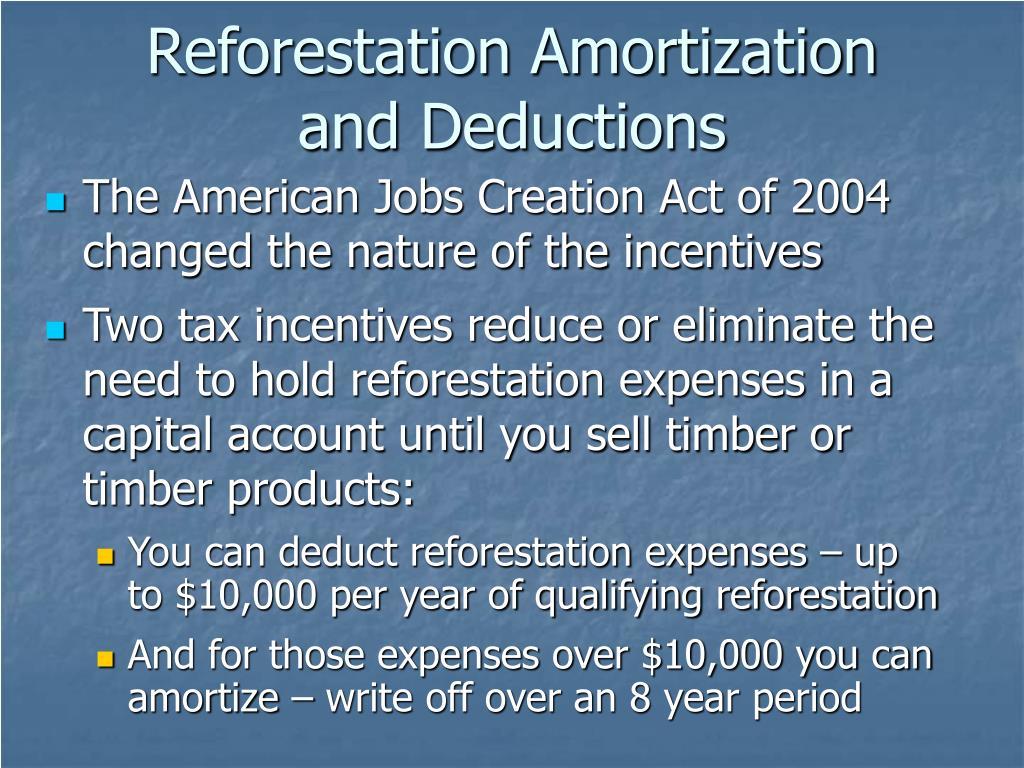 Reforestation Amortization