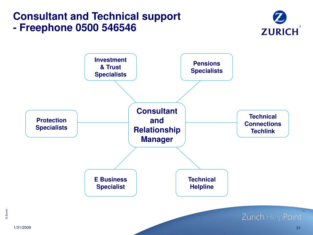 Consultant and Technical support