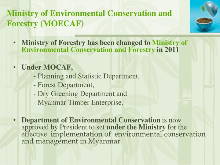 Ministry of Forestry