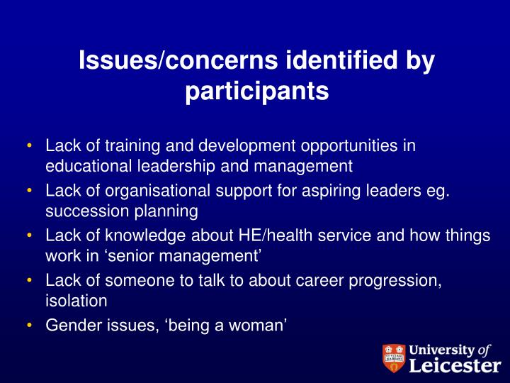 Issues/concerns identified by participants
