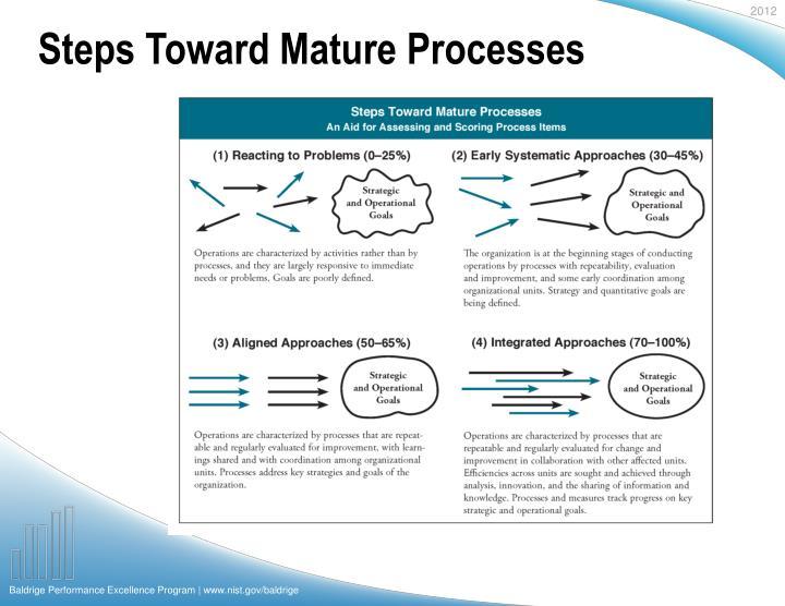 Steps Toward Mature Processes