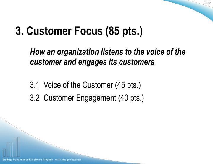 3. Customer Focus (85 pts.)
