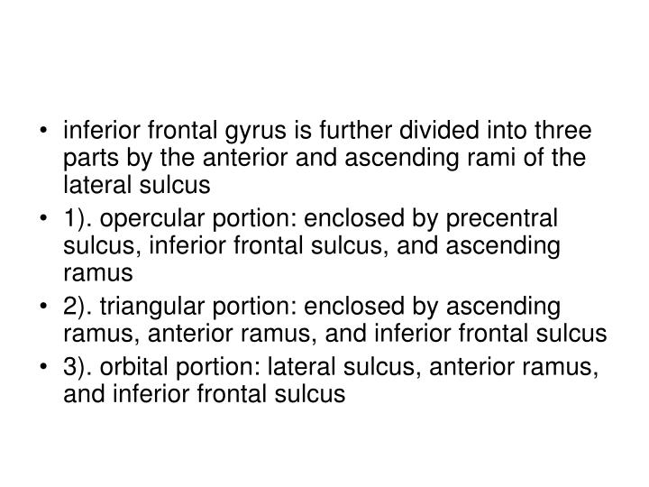 inferior frontal gyrus is further divided into three parts by the anterior and ascending rami of the lateral sulcus