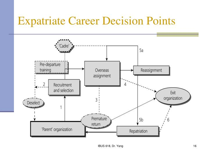 Expatriate Career Decision Points