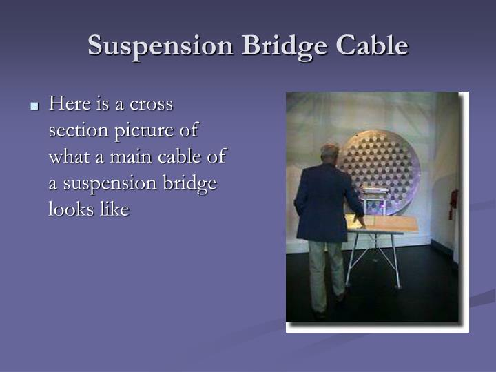 Suspension Bridge Cable