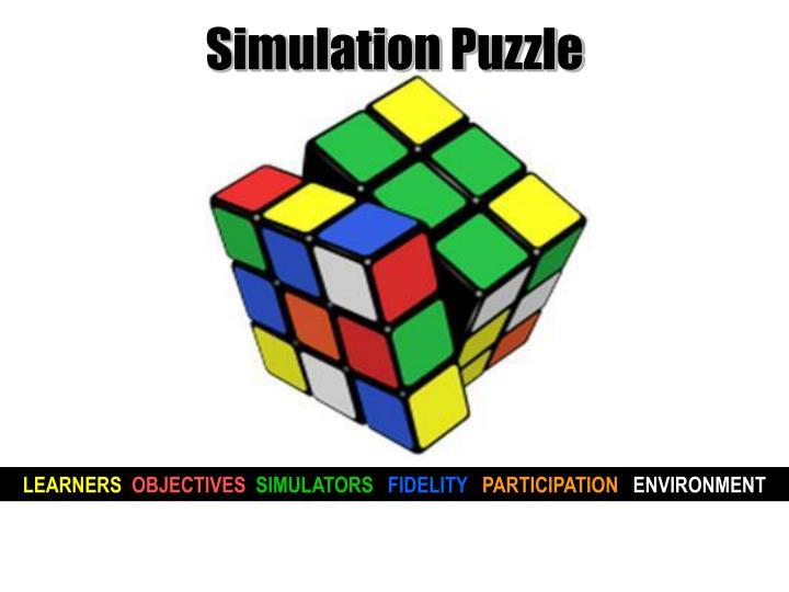 Simulation Puzzle