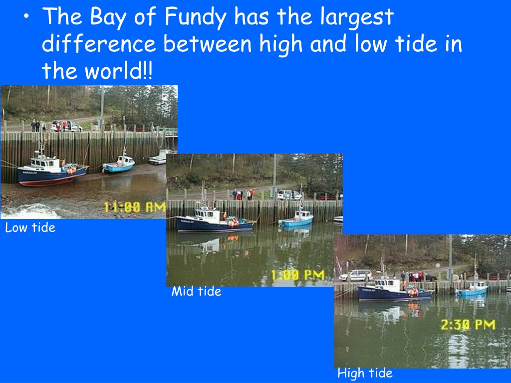The Bay of Fundy has the largest difference between high and low tide in the world!!