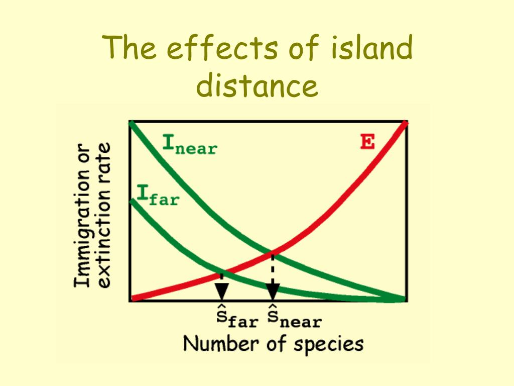 The effects of island distance