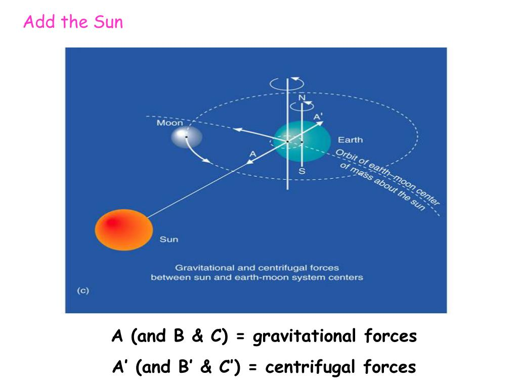 A (and B & C) = gravitational forces