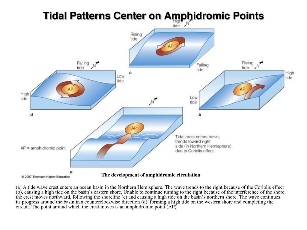 Tidal Patterns Center on