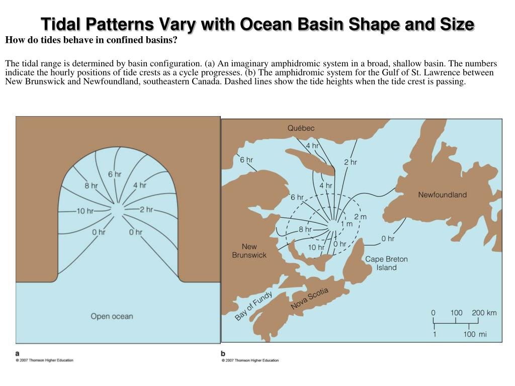 Tidal Patterns Vary with Ocean Basin Shape and Size