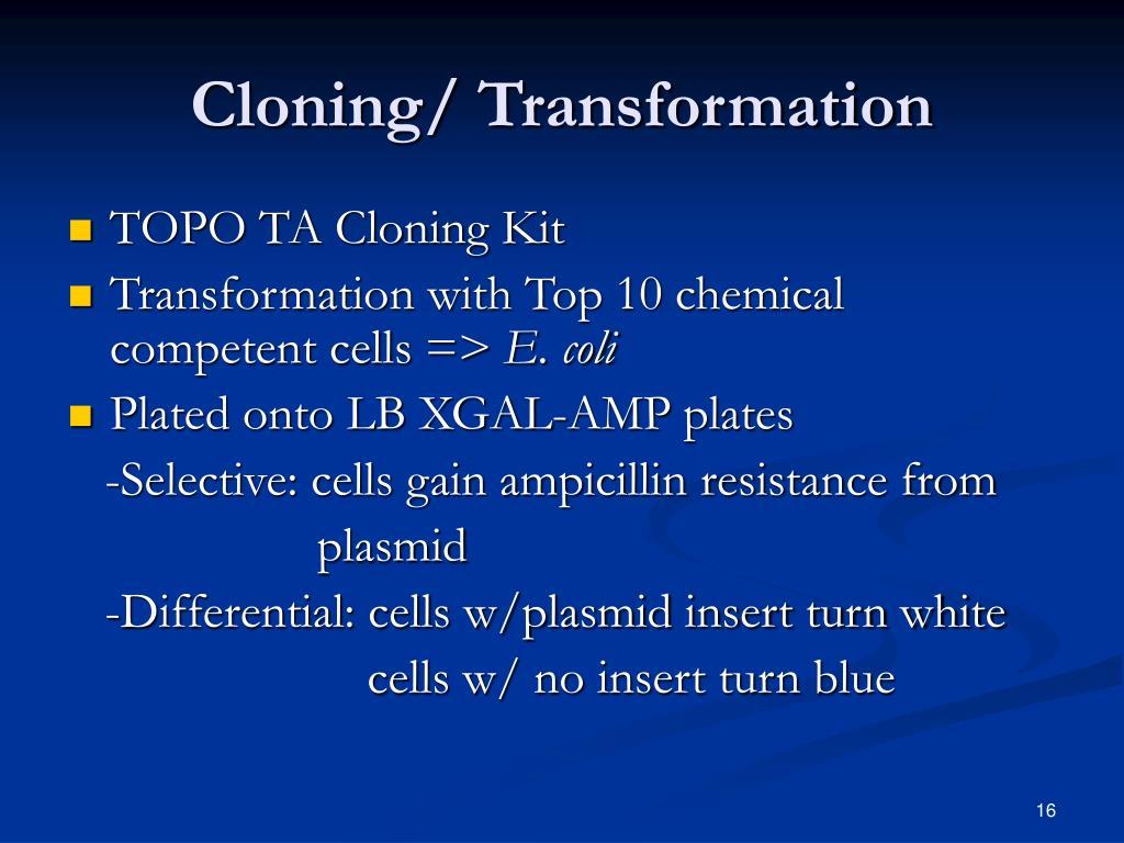 Cloning/ Transformation