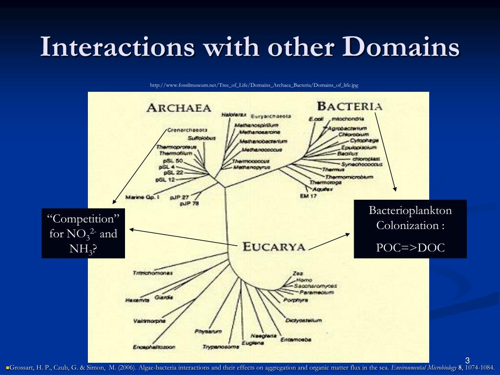 Interactions with other Domains