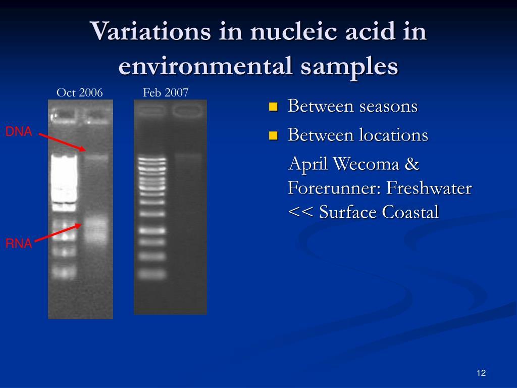 Variations in nucleic acid in environmental samples