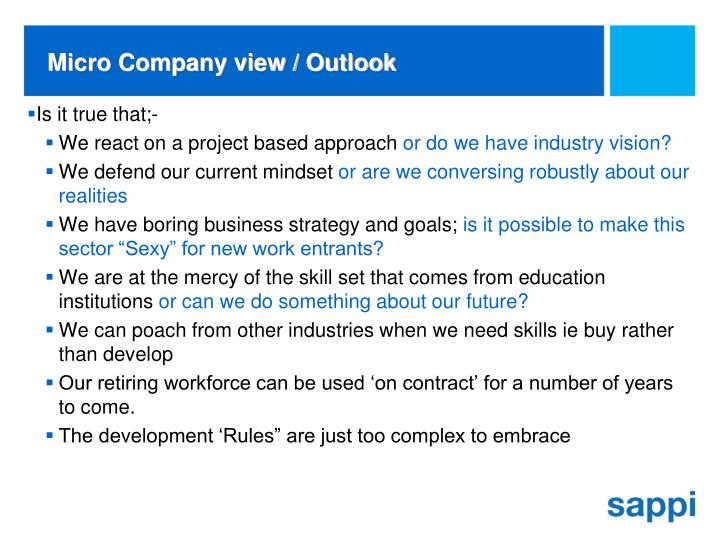 Micro Company view / Outlook