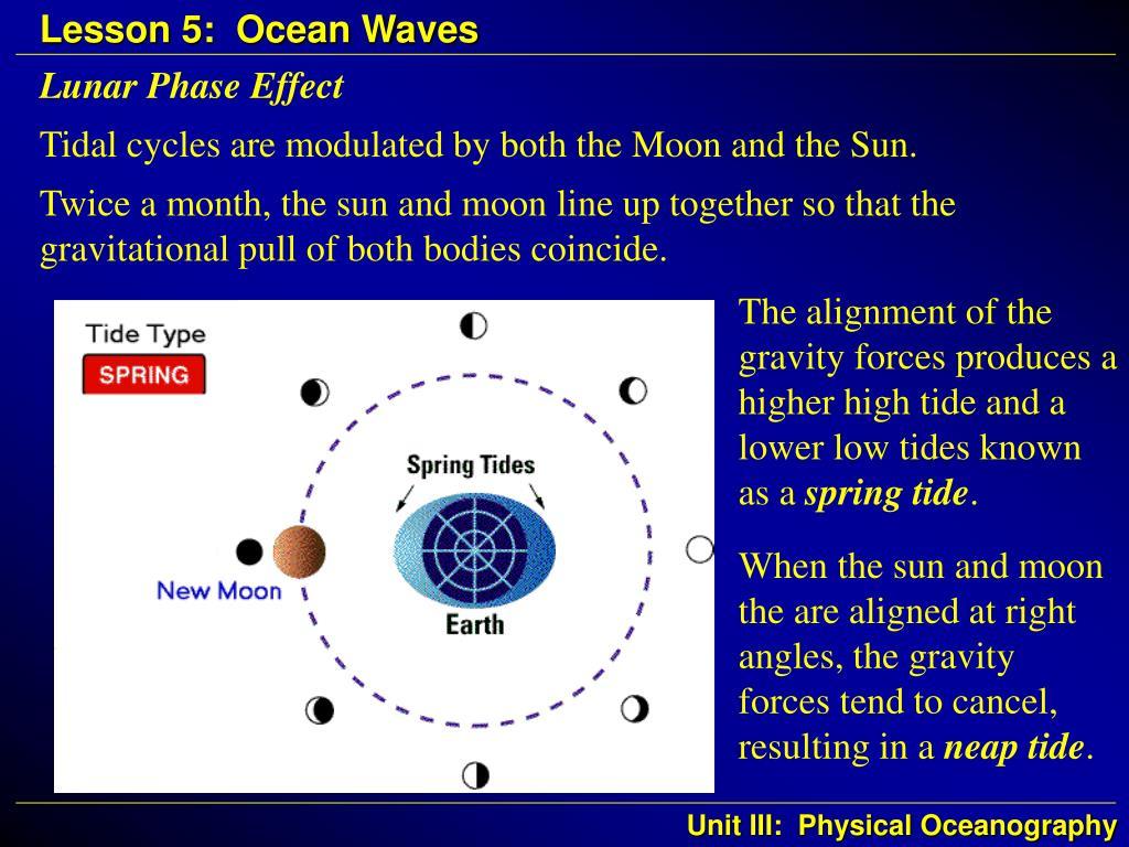 Lunar Phase Effect