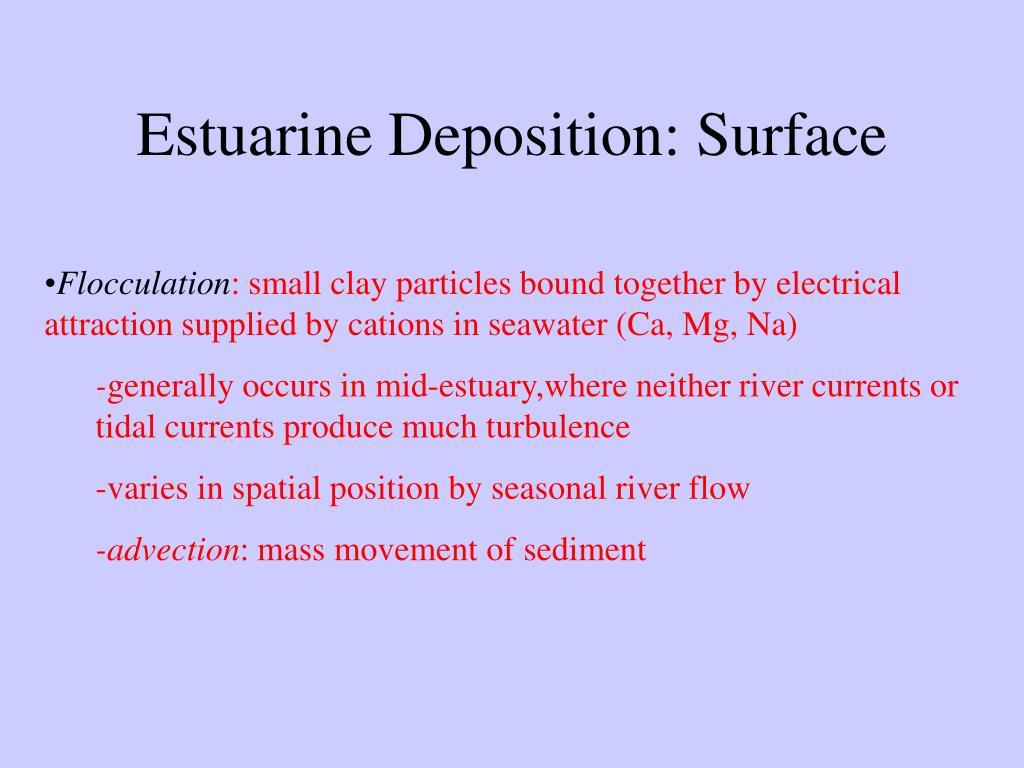 Estuarine Deposition: Surface