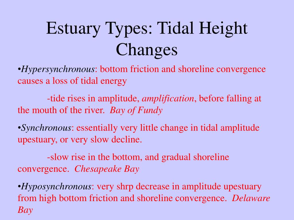 Estuary Types: Tidal Height Changes