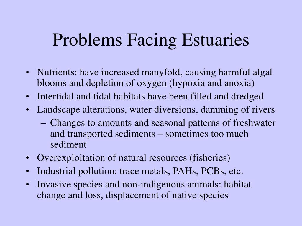 Problems Facing Estuaries