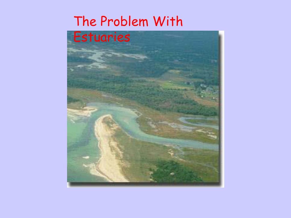 The Problem With Estuaries