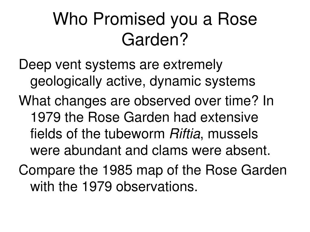 Who Promised you a Rose Garden?