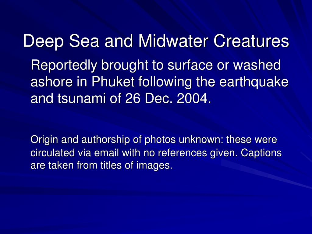 Deep Sea and Midwater Creatures