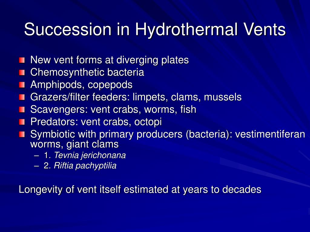 Succession in Hydrothermal Vents