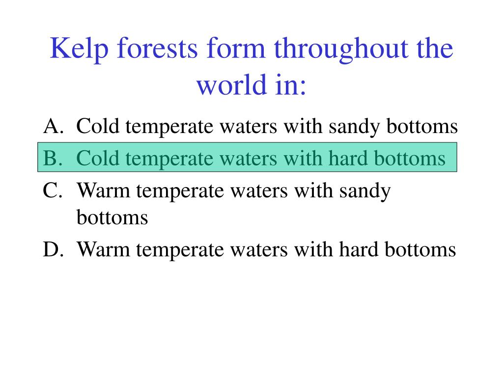Kelp forests form throughout the world in: