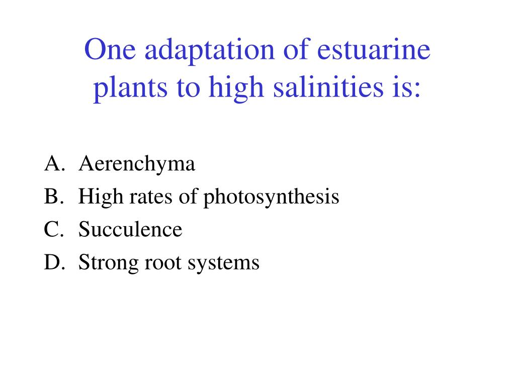 One adaptation of estuarine plants to high salinities is: