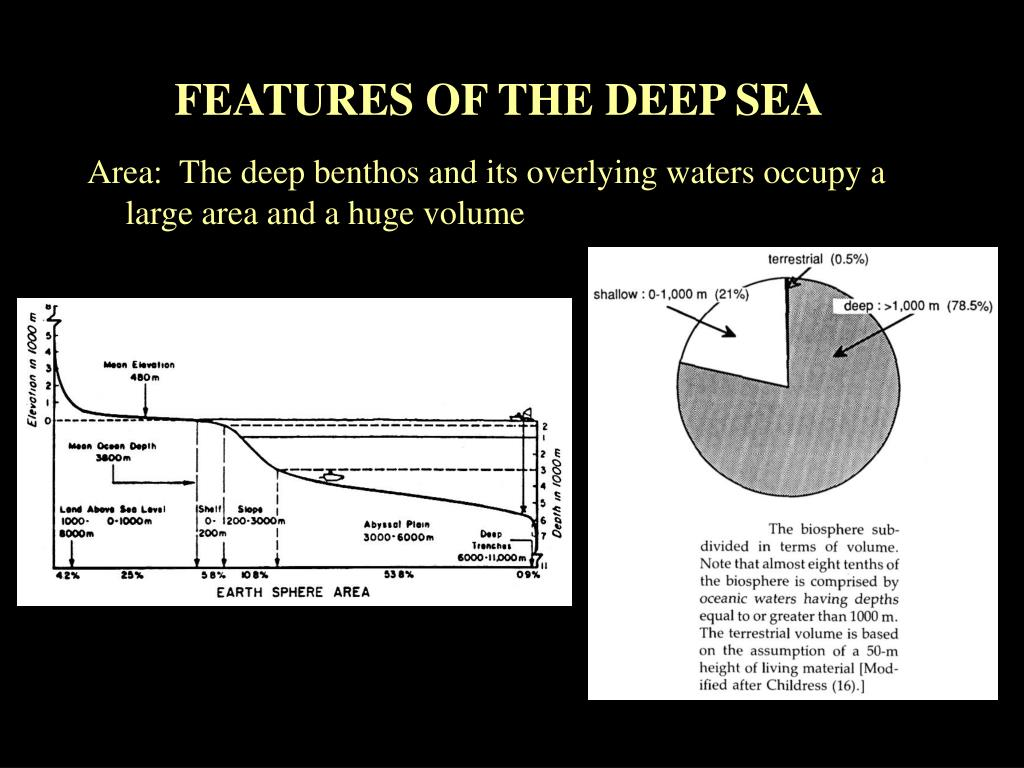 FEATURES OF THE DEEP SEA