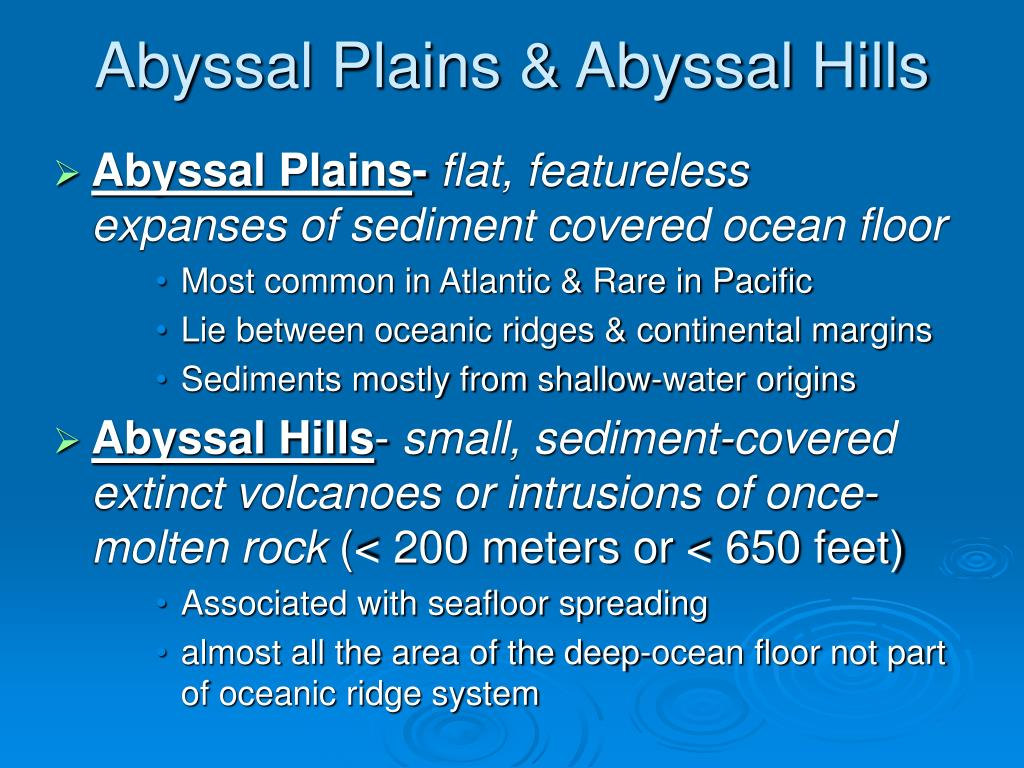Abyssal Plains & Abyssal Hills