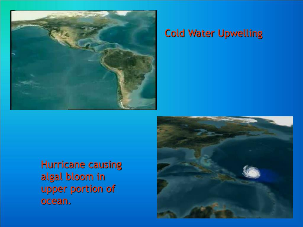 Cold Water Upwelling
