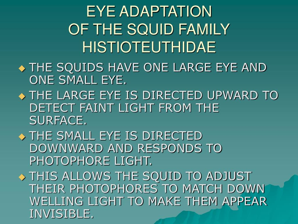 EYE ADAPTATION