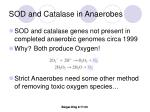 sod and catalase in anaerobes