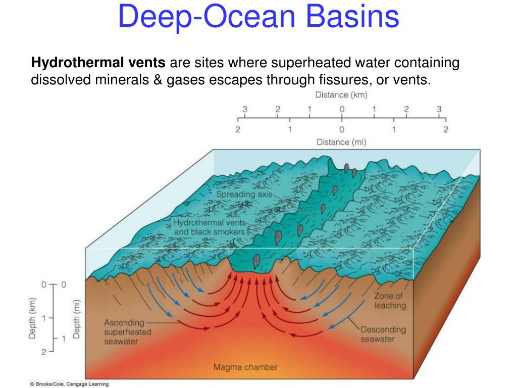 Deep-Ocean Basins
