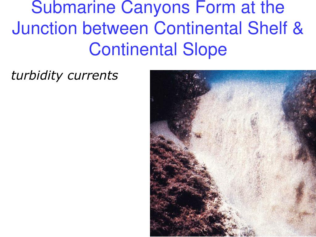 Submarine Canyons Form at the Junction between Continental Shelf & Continental Slope