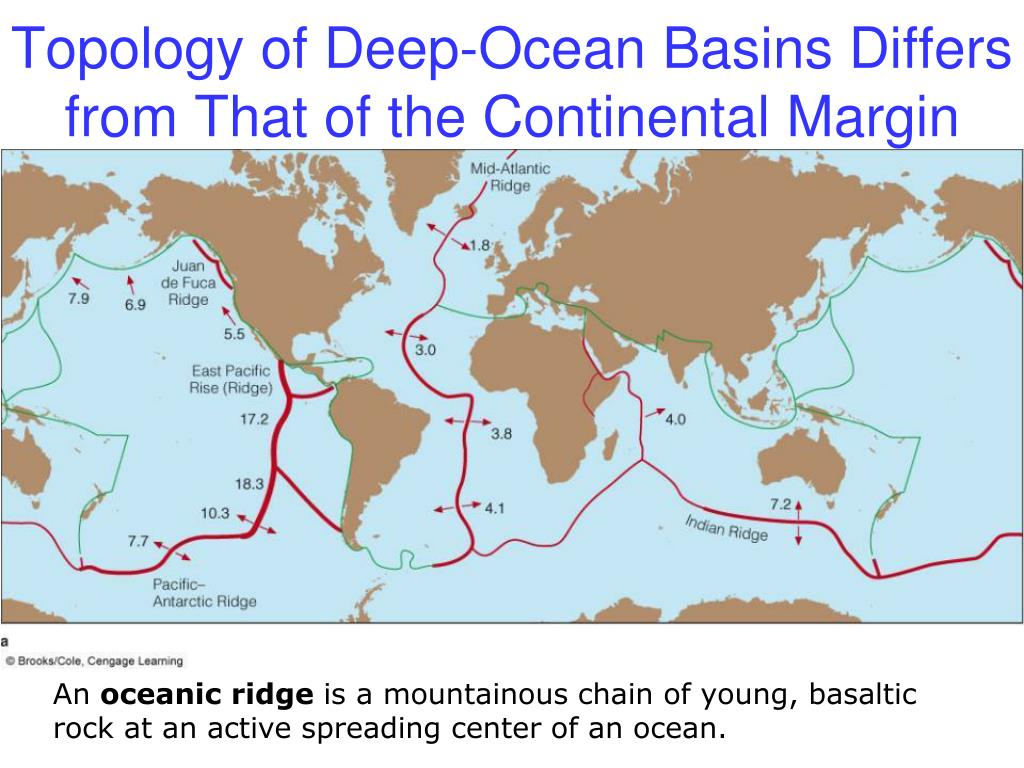 Topology of Deep-Ocean Basins Differs from That of the Continental Margin